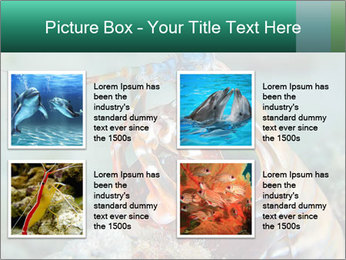 0000080955 PowerPoint Template - Slide 14