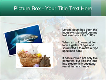 0000080955 PowerPoint Templates - Slide 20