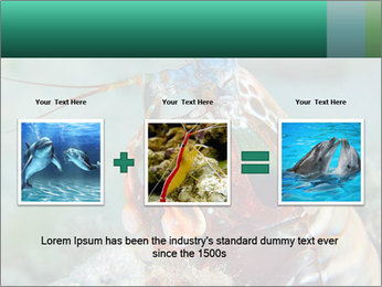 0000080955 PowerPoint Templates - Slide 22