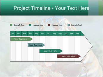 0000080955 PowerPoint Templates - Slide 25