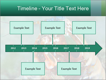0000080955 PowerPoint Templates - Slide 28