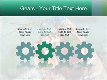 0000080955 PowerPoint Templates - Slide 48