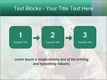 0000080955 PowerPoint Templates - Slide 71