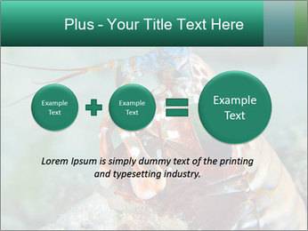 0000080955 PowerPoint Templates - Slide 75