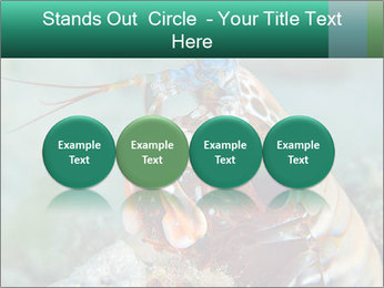 0000080955 PowerPoint Templates - Slide 76