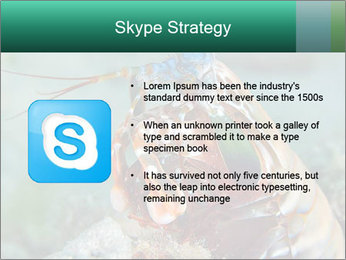 0000080955 PowerPoint Template - Slide 8