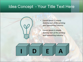 0000080955 PowerPoint Template - Slide 80