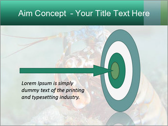 0000080955 PowerPoint Template - Slide 83