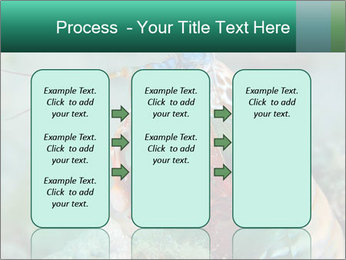 0000080955 PowerPoint Templates - Slide 86
