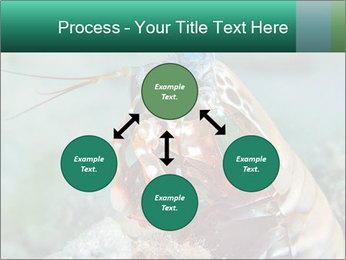 0000080955 PowerPoint Template - Slide 91
