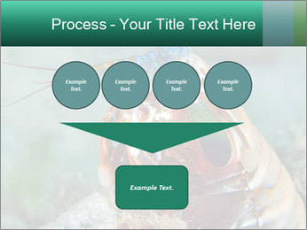0000080955 PowerPoint Templates - Slide 93