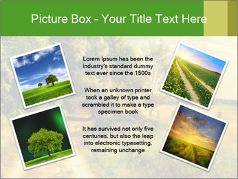 0000080956 PowerPoint Template - Slide 24