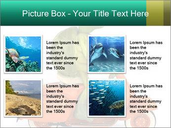 0000080959 PowerPoint Template - Slide 14