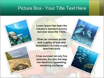 0000080959 PowerPoint Template - Slide 24