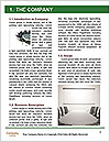 0000080964 Word Template - Page 3