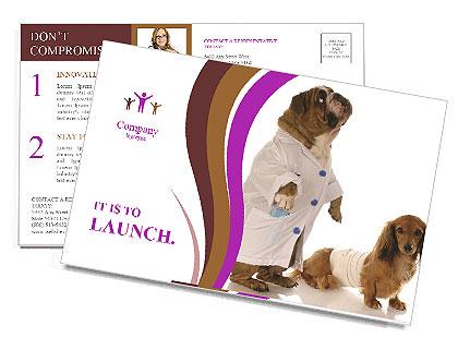0000080969 Postcard Templates