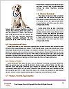 0000080969 Word Template - Page 4