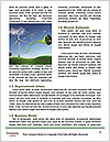 0000080972 Word Template - Page 4
