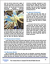 0000080974 Word Template - Page 4