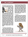 0000080978 Word Template - Page 3