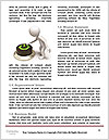 0000080978 Word Template - Page 4
