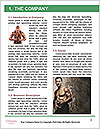 0000080982 Word Template - Page 3