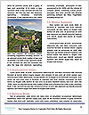 0000080984 Word Template - Page 4