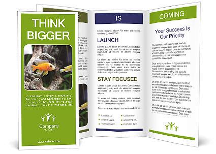 0000080987 Brochure Template