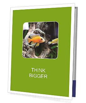 0000080987 Presentation Folder