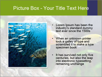 0000080987 PowerPoint Template - Slide 13