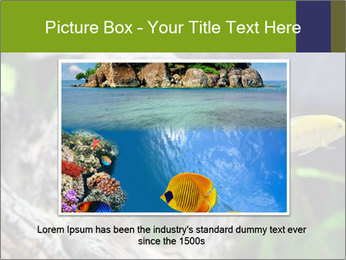 0000080987 PowerPoint Template - Slide 15