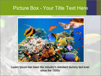 0000080987 PowerPoint Template - Slide 16