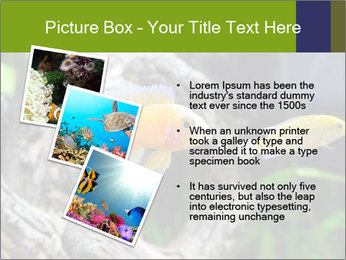 0000080987 PowerPoint Template - Slide 17