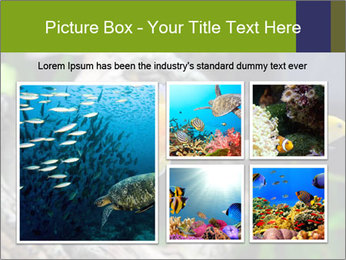 0000080987 PowerPoint Template - Slide 19
