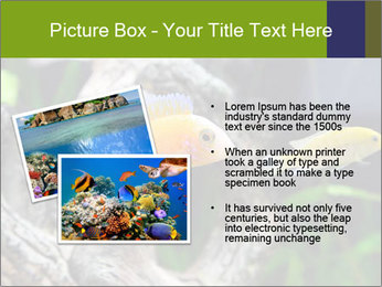 0000080987 PowerPoint Template - Slide 20