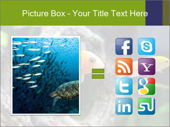 0000080987 PowerPoint Template - Slide 21