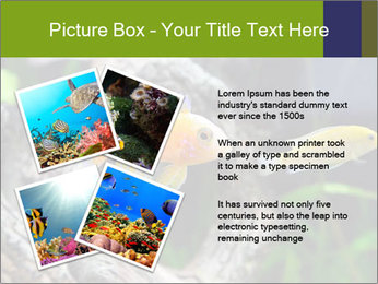 0000080987 PowerPoint Template - Slide 23
