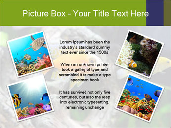 0000080987 PowerPoint Template - Slide 24