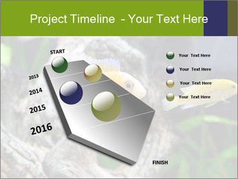 0000080987 PowerPoint Template - Slide 26