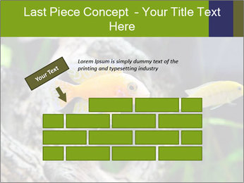 0000080987 PowerPoint Template - Slide 46