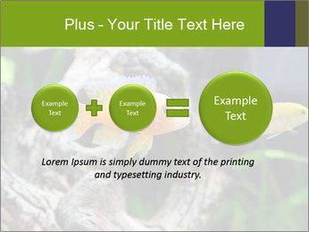 0000080987 PowerPoint Template - Slide 75