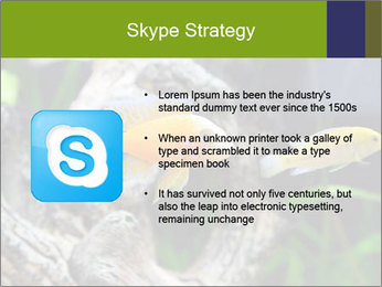 0000080987 PowerPoint Template - Slide 8
