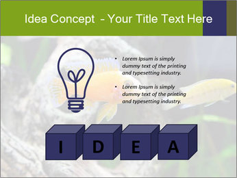 0000080987 PowerPoint Template - Slide 80