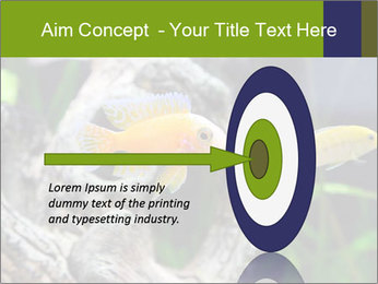 0000080987 PowerPoint Template - Slide 83