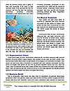 0000080987 Word Template - Page 4