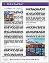 0000080988 Word Template - Page 3