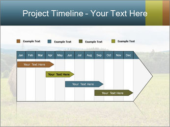 0000080993 PowerPoint Templates - Slide 25