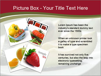0000080996 PowerPoint Template - Slide 23
