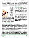 0000080998 Word Template - Page 4