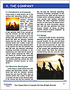 0000081001 Word Template - Page 3